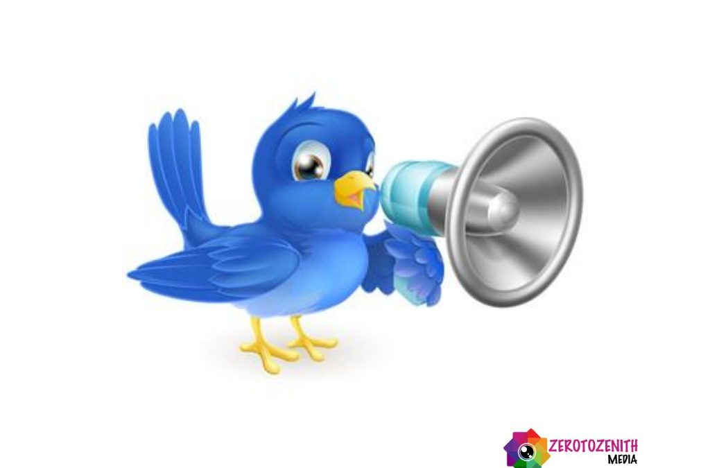 Create a Profitable Twitter Advertising Campaign That Drives Sales